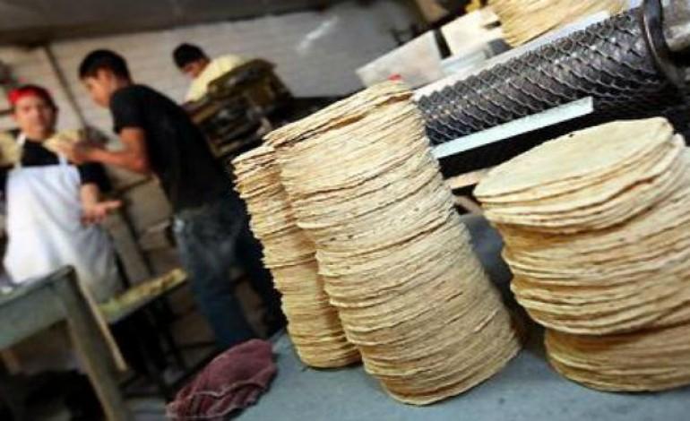 tortillerías