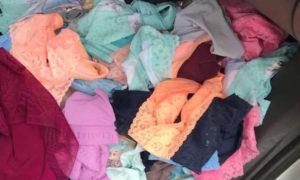 lencería