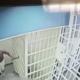 guardia de prisión