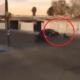 atropellado, Tijuana, secuestro