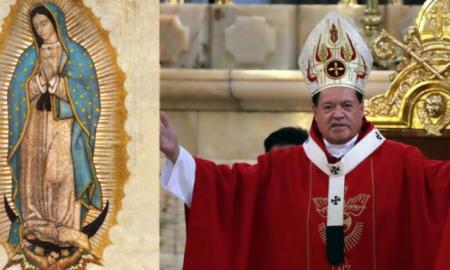 cardenal, virgen, destacado