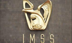 IMSS, subdelegado, asesinato, Tijuana