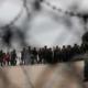 Trump, migrantes, petición, Estados Unidos