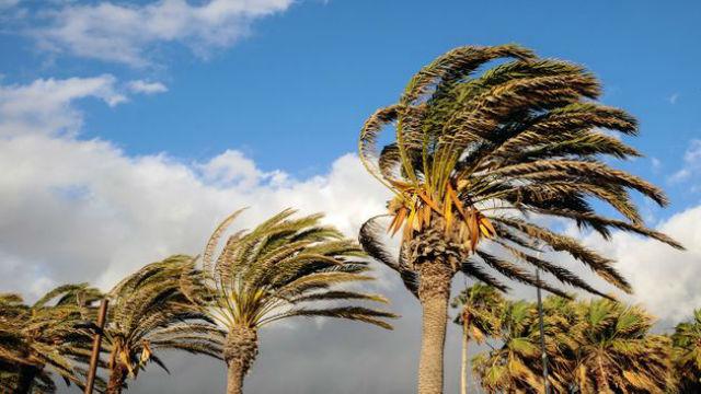 vientos, Santa Ana, San Diego, Tijuana, California, clima