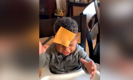cheese challenge, Viral, reto, bebés