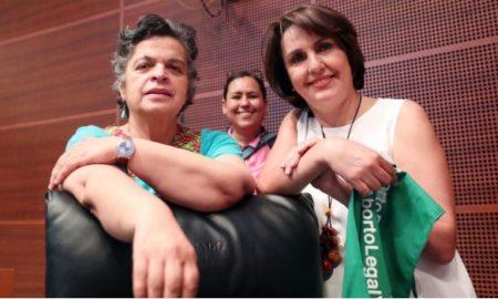 Patricia Mercado, aborto, senadora, consulta popular