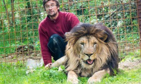 León, mascota, medio ambiente