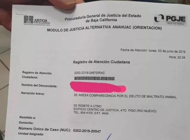 violación, perritos, Mexicali, PGJE, denuncia