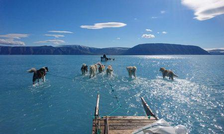 fotografía, viral, groenlandia, hielo, clima, cambio climático