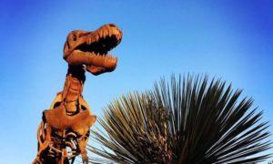 vinos, coahuila, vinícola, turismo, dinosaurios
