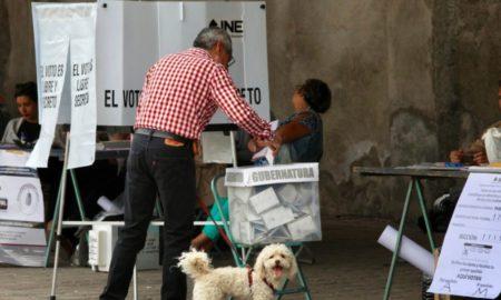 voto electronico, ine, ahorro, destacados