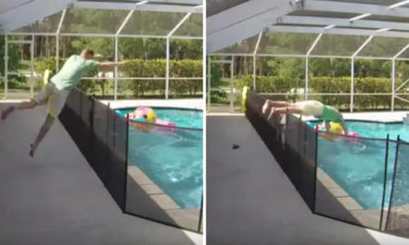 video, viral, padre, hijo, salva, piscina