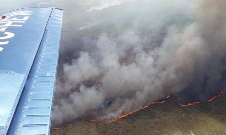 incendio, forestal, biósfera, reserva, quintana roo