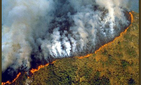 brasil, bolivia, amazonas, incendios, argentina, macri, bolsonaro