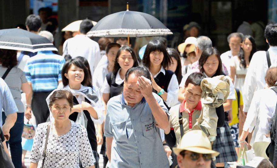 japón, calor, temperaturas, clima, muertos