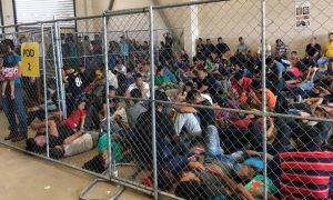 gripa, vacunas, centro migrante, migrantes, niños, gripa, eeuu