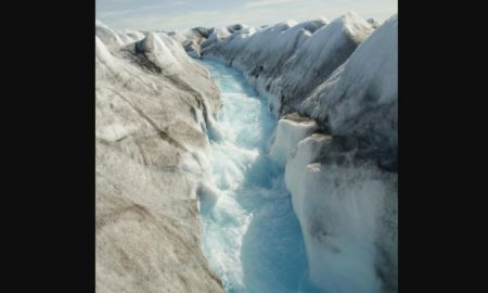 clima, hielo, groenlandia, cambio climático, video, viral