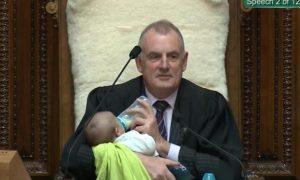 nueva zelanda, parlamento, mallard, bebé, video, viral
