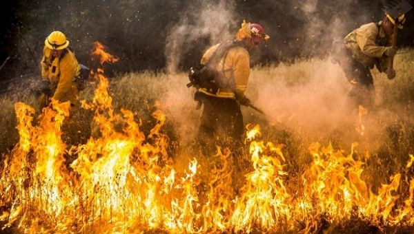 Bolivia, incendios forestales, Amazonas, bosque