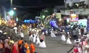 elefante, Sri Lanka, festival, desfile, heridos, derechos animales