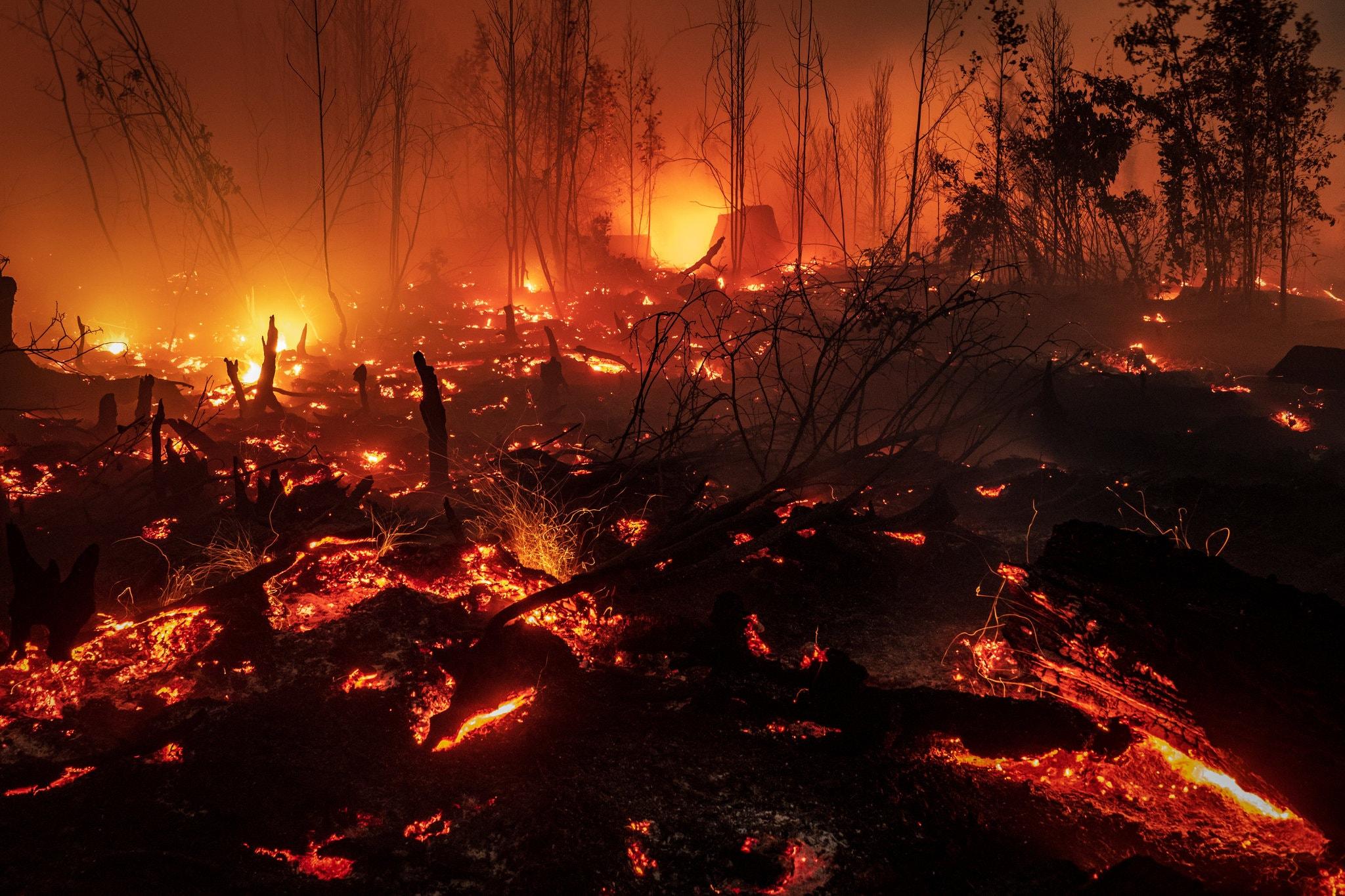 incendios, Indonesia, forestales, medio ambiente