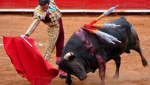 amlo, toros, corridas de toros, amlo, noticias hoy