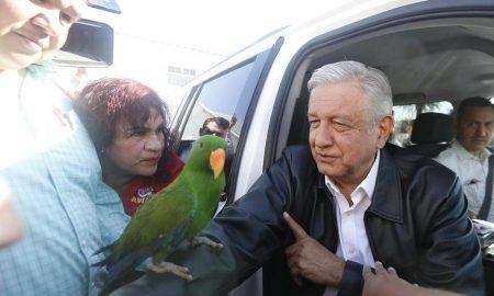 AMLO, López Obrador, Coahuila, Torreón, video, perico