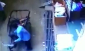 video, viral, India, niño, bicitaxi