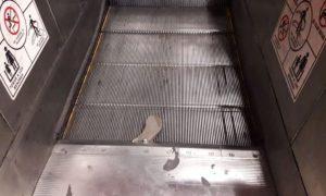 metro, ciudad de méxico, CDMX, zapato, escaleras