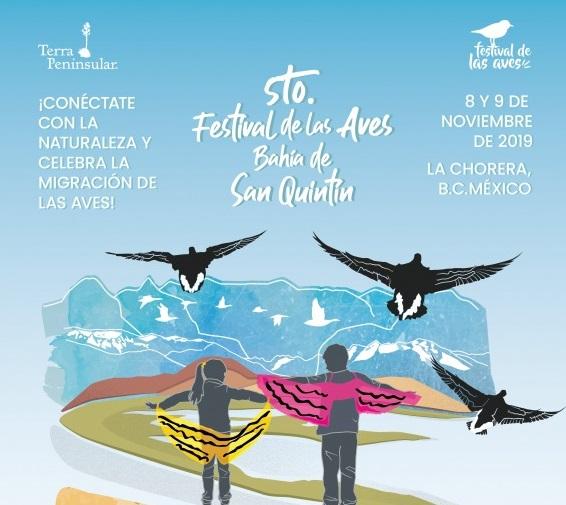 Festival,avistamiento,aves,San Quintín