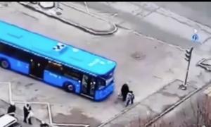 autobús nieto