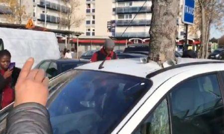 carro árbol