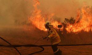 incendios, Australia, muertos, Nueva Gales del Sur