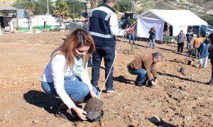 reforestación,relleno sanitario,Grupo GEN