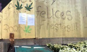 marihuana, legalización