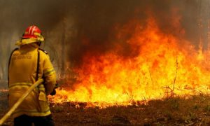 bomberos, Australia, Canadá, incendios forestales