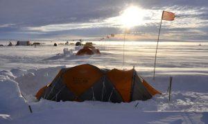 glacial, internacional, Antártica, medio ambiente, calentamiento global