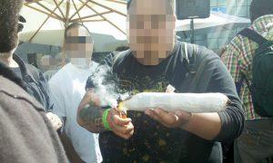 marihuana, España, Europa, policías, droga