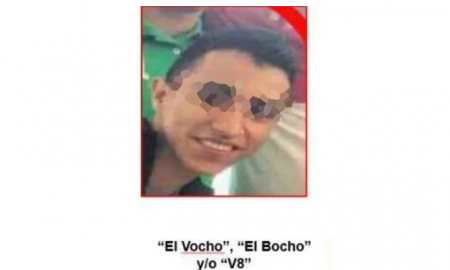 El Vocho, delincuente, detenido, los viagras, Michoacán