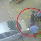 video, lo viral, actualidad, carro, choque, gasolina, heridos