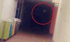 fantasma, UNAM, CDMX, Facebook, actualidad, lo viral