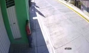 video, acoso, acoso sexual, Oaxaca, nacional, kínder