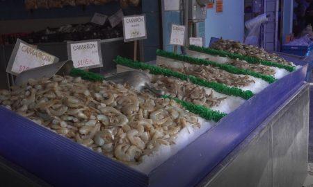 venta mariscos pescados
