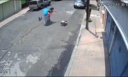 Hombre, empuja, mujer, perros, piso, denuncia, video, viral