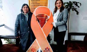 INMUJER, protocolo, acoso sexual, acoso callejero, violencia contra la mujer, Baja California