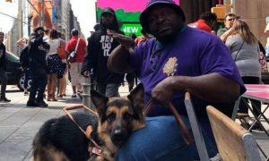 actualidad, invidente, perro, mascota, robo, EEUU, Chicago