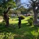 Rehabilitación parque morelos