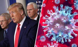 Donald Trump, EEUU, Nueva York, coronavirus, pandemia, muertes
