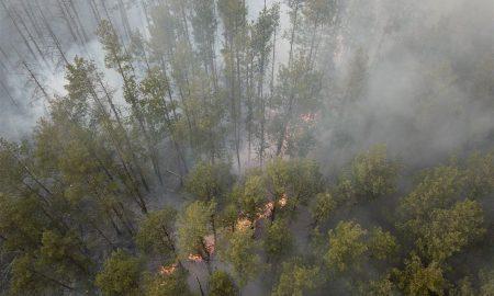 Chernobyl, incendios, radiación, internacional, incendio forestal