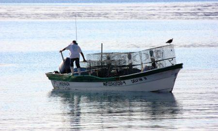 empresas pesqueras